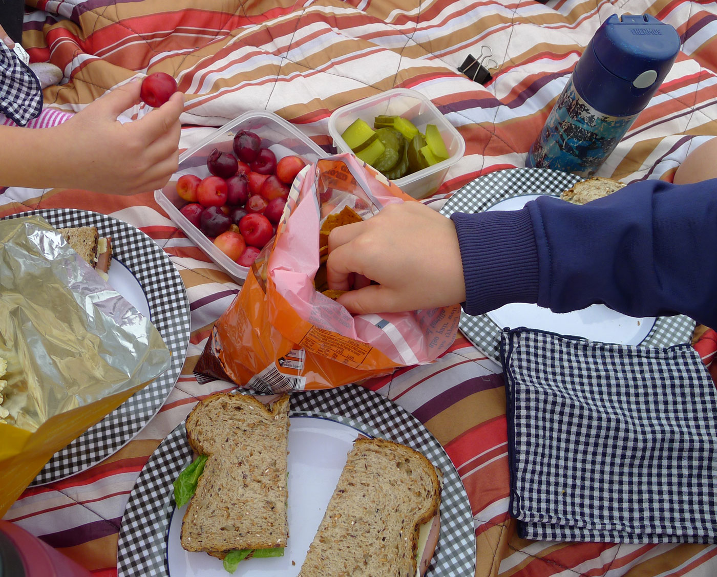 family picnic lunch: ham and cheese sandwich, assorted nibblies